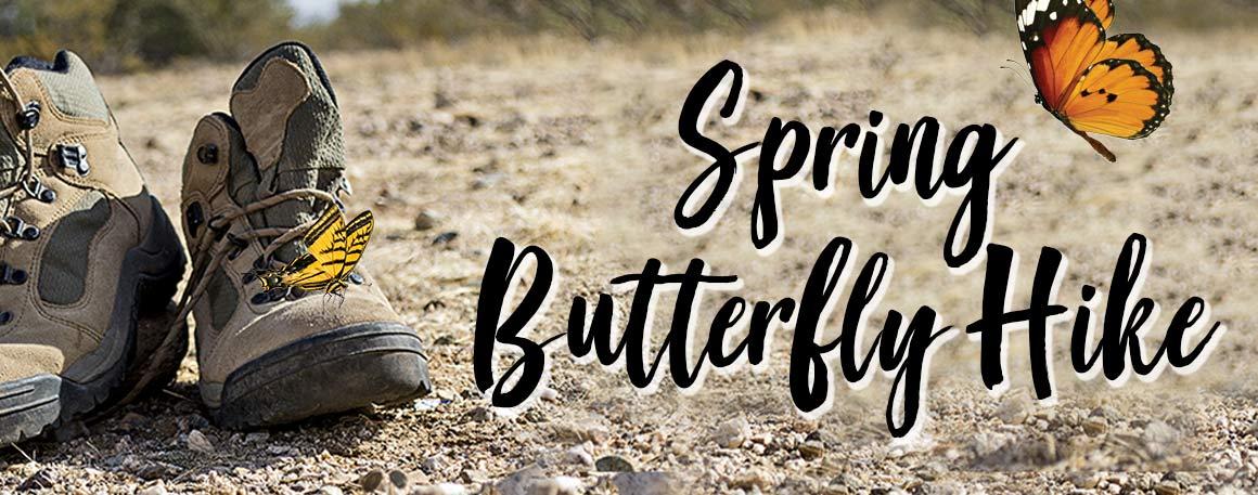 Butterfly Hike