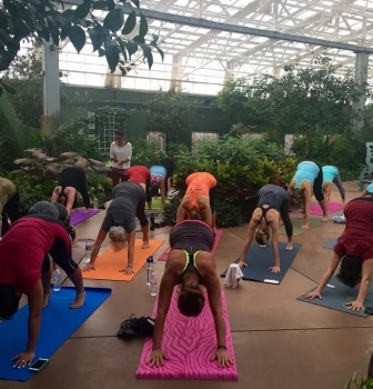 Yoga in the Rainforest