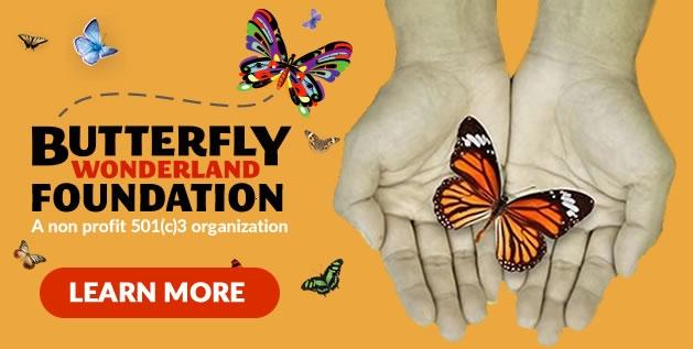 Butterfly Wonderland Foundation