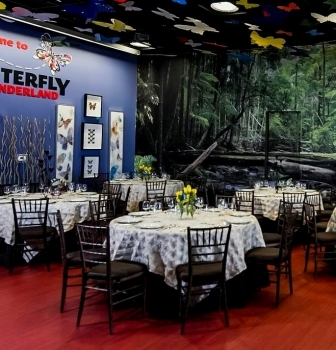 Meetings and Events at Butterfly Wonderland
